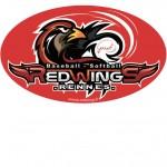 sticker redwings